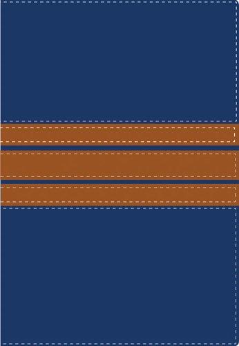 NVI/NIV Biblia bilingüe (Spanish Edition): Zondervan
