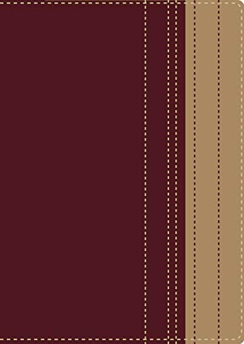 9780829759945: Santa Biblia lectura fácil RVR (Spanish Edition)