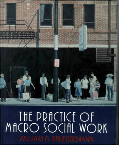 9780830413683: The Practice of Macro Social Work