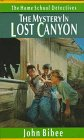 The Mystery in Lost Canyon (Home School Detectives)