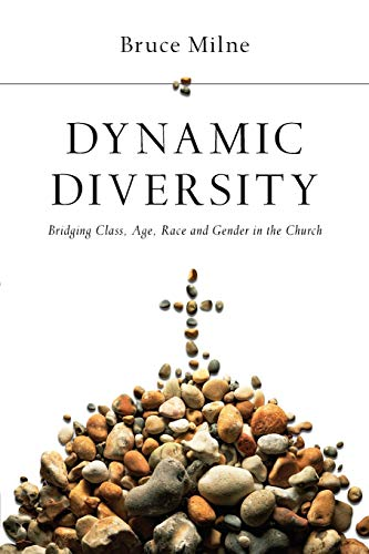 9780830828067: Dynamic Diversity: Bridging Class, Age, Race and Gender in the Church