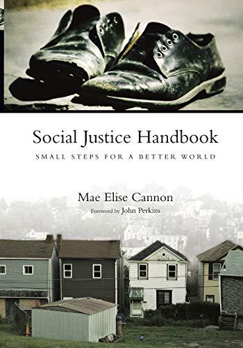 9780830837151: Social Justice Handbook: Small Steps for a Better World