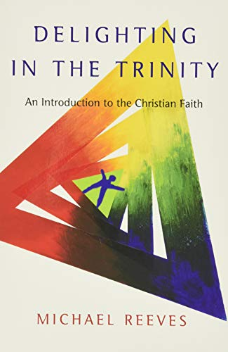 9780830839834: Delighting in the Trinity: An Introduction to the Christian Faith