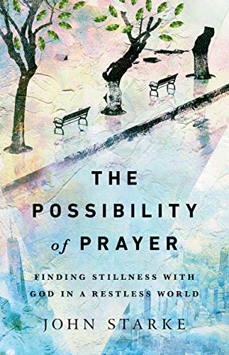 9780830845798: The Possibility of Prayer: Finding Stillness With God in a Restless World