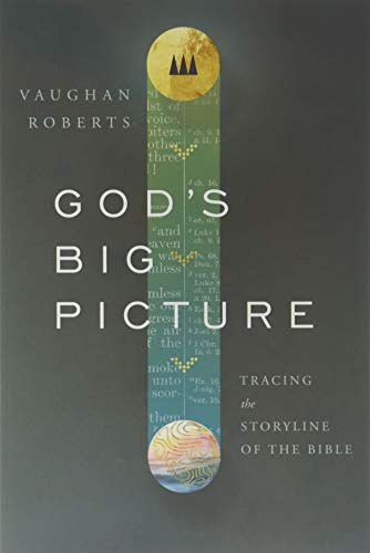 9780830853649: God's Big Picture: Tracing the Storyline of the Bible