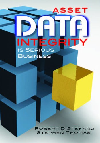 9780831134228: Asset Data Integrity Is Serious Business