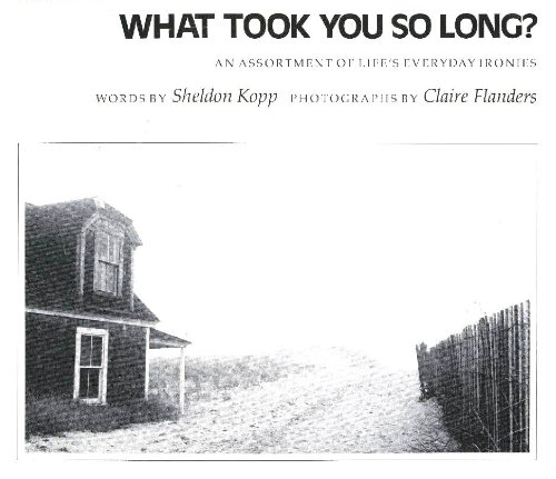 9780831400569: What Took You So Long: An Assortment of Life's Everyday Ironies