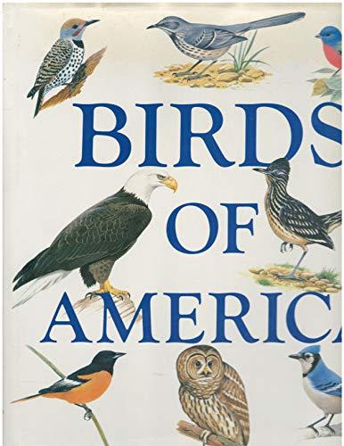 9780831708887: Birds of America