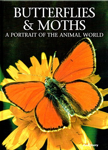9780831708894: Butterflies & Moths: A Portrait of the Animal World
