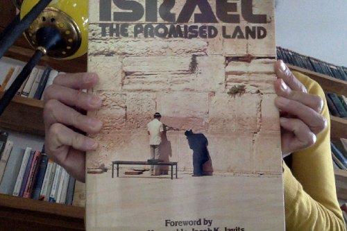 9780831751203: ISRAEL: THE PROMISED LAND