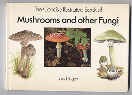 9780831761936: The Concise Illustrated Book of Mushrooms and Other Fungi