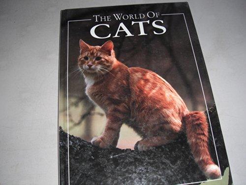 The World of Cats: Angela Rixon
