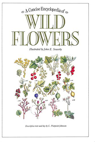 Download A Concise Encyclopedia of Wild Flowers