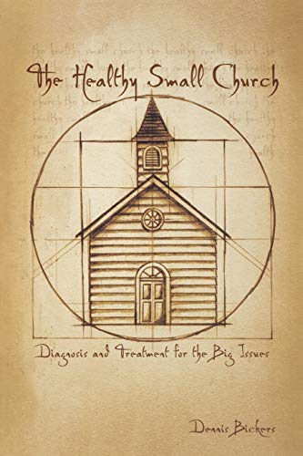 9780834122406: The Healthy Small Church: Diagnosis and Treatment for the Big Issues