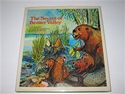 9780834830172: The secret of Beaver Valley, (An Island Heritage book)