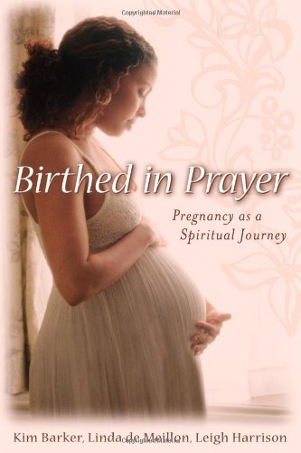 9780835899413: Birthed in Prayer: Pregnancy as a Spiritual Journey