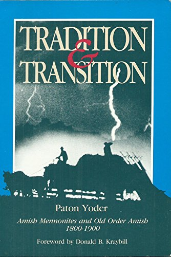 9780836131154: Tradition and Transition: Amish Mennonites and Old Order Amish, 1800-1900 (Studies in Anabaptist and Mennonite History ; No.31)