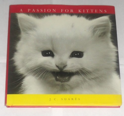 A Passion for Kittens: Suares, Jean-Claude
