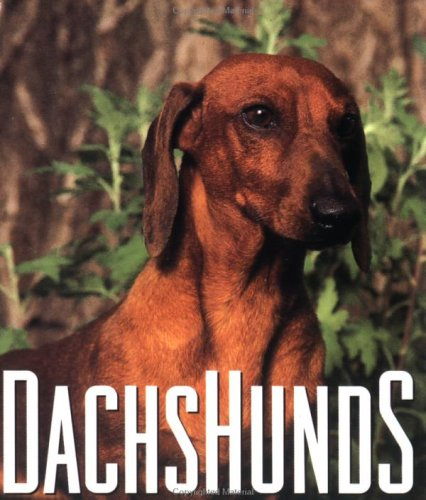 Dachshunds (Little Books): McDonald, Jane