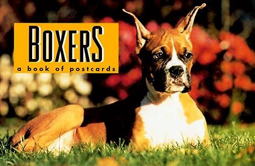 9780836228830: Boxers
