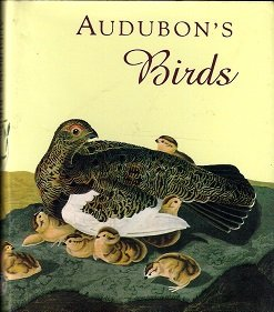 9780836230161: Audubon's Birds (Andrews and McMeel Gift Books)