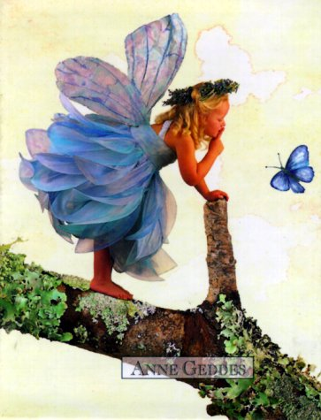 9780836236965: Fairies Photo Album
