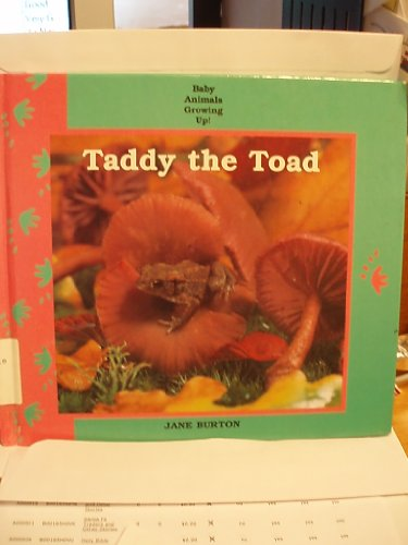 9780836802115: Taddy the Toad (Baby Animals Growing Up)