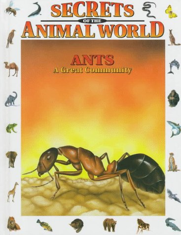9780836813937: Ants C: A Great Community (Secrets of the Animal World)