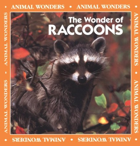 The Wonder of Raccoons (Animal Wonders): Ritchie, Rita, Fair, Jeff