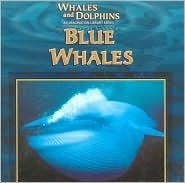 Blue Whales (Whales and Dolphins): Gentle, Victor, Perry,