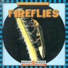 Fireflies (Let's Read About Insects): Susan Ashley PhD