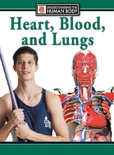 9780836842067: Heart, Blood, and Lungs (Understanding the Human Body)