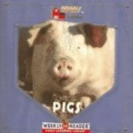 9780836842821: Pigs (Animals That Live on the Farm)