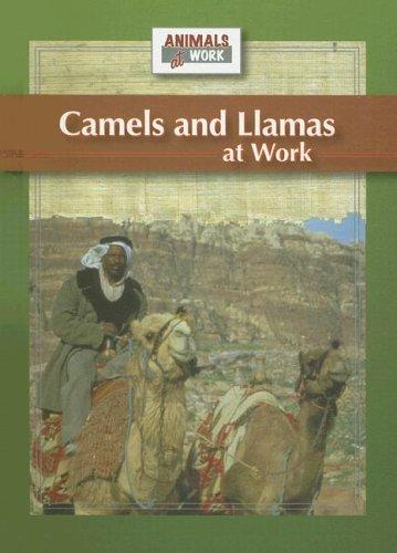 Camels and Llamas at Work (Animals at Work): Barnes, Julia