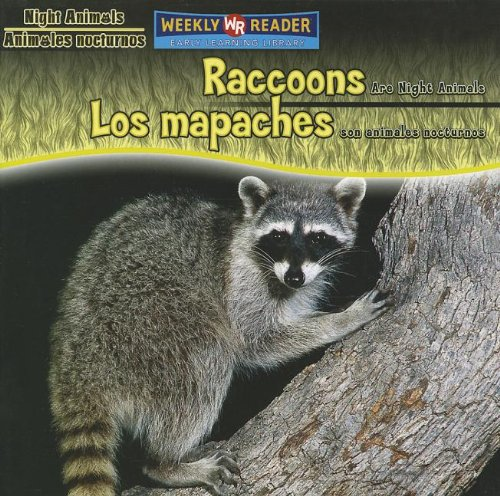 9780836880533: Raccoons Are Night Animals/Los Mapaches Son Animales Nocturnos (Night Animals/ Animales Nocturnos) (Spanish Edition)