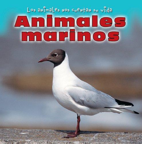 9780836881622: Animales Marinos/Sea Animals (Los Animales Nos Cuentan Su Vida/Animal Show and Tell) (Spanish Edition)