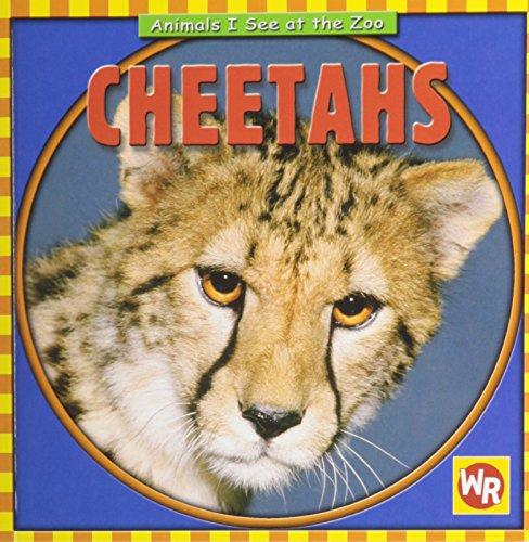 9780836882254: Cheetahs (Animals I See at the Zoo)