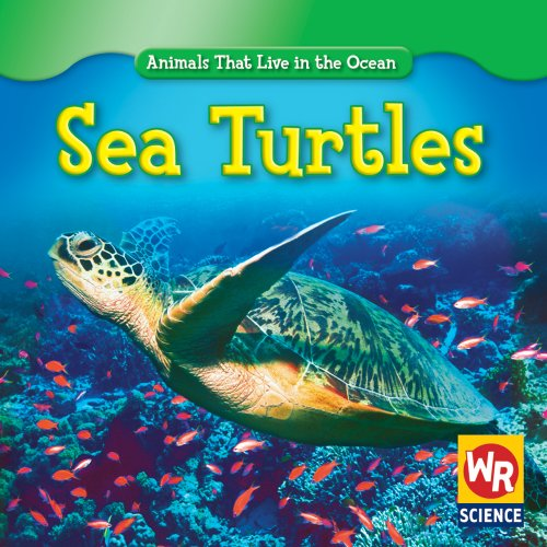 Sea Turtles (Animals That Live in the Ocean)