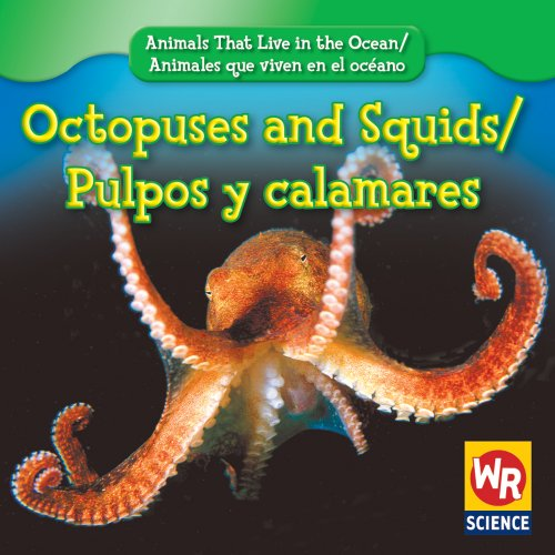 9780836892482: Octopuses and Squids/Pulpos Y Calamares (Animals That Live in the Ocean/Animales Que Viven En El Oceano) (English and Spanish Edition)