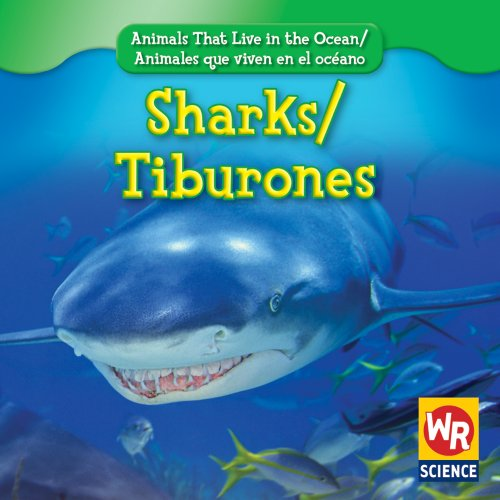 9780836892512: Sharks/Tiburones (Animals That Live in the Ocean/Animales Que Viven En El Oceano) (English and Spanish Edition)