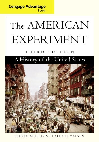 9780840029522: The American Experiment: A History of the United States