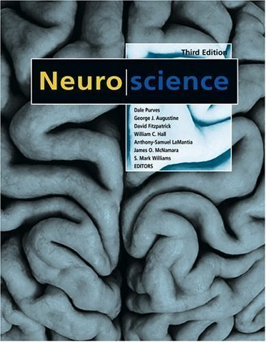 9780840032652: Cognitive Neuroscience, 3rd Edition