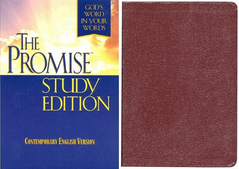 The Promise: God's Word in Your Words/Burgundy Bonded Leather