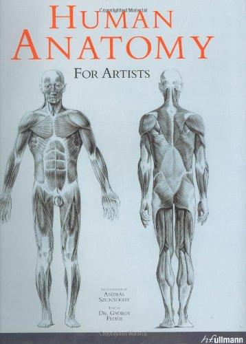 9780841601789: Human Anatomy for Artists - AbeBooks: 084160178X