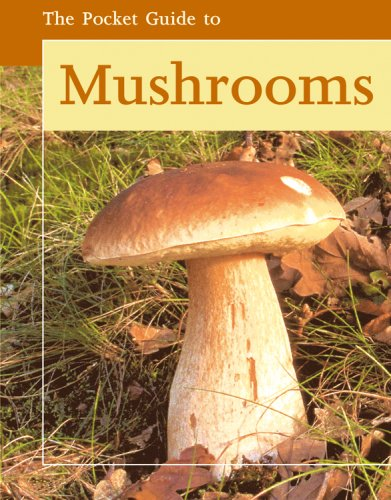 9780841602700: The Pocket Guide to Mushrooms