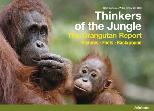 9780841602854: Thinkers of the Jungle