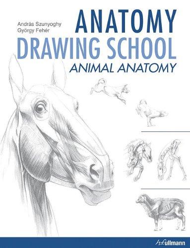 9780841672222: Anatomy Drawing School: Animal Anatomy
