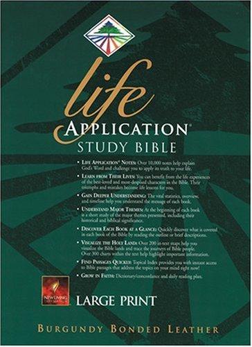 9780842332460: Life Application Study Bible Large Print: NLT1 (New Living Translation)