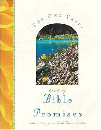 9780842338875: The One Year Book of Bible Promises
