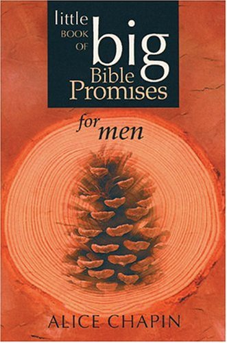 9780842342339: The Little Book of Big Bible Promises for Men